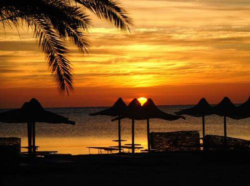 Image result for Marsa Alam country picture